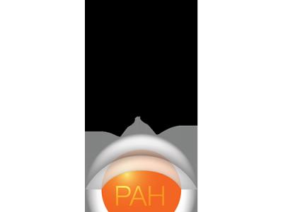 Kinetex PAH